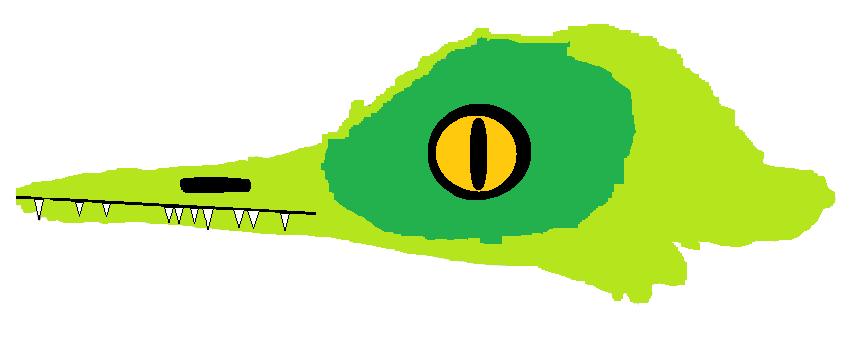 oculudentavis head.png